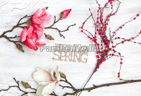 spring background with beautiful flowers on