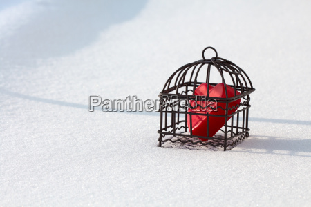 heart in cage in the snow