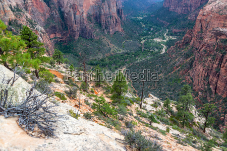 looking down into zion canyon