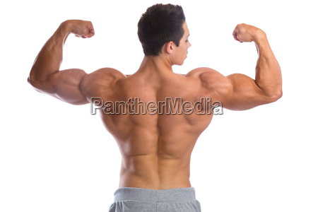 bodybuilder bodybuilding muscles back biceps man