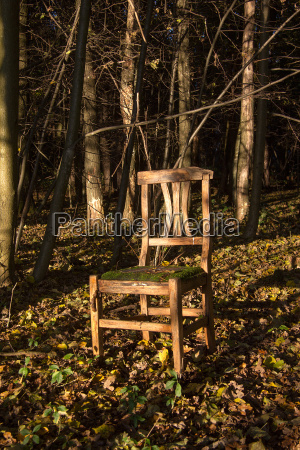brown armchair in a forest as