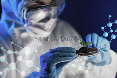 close up of scientist with plant