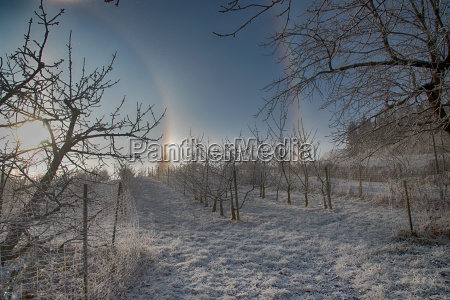 halo on winter day