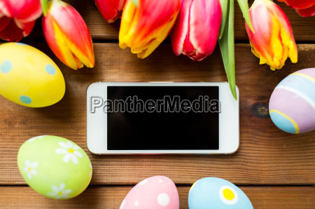 close up of easter eggs flowers