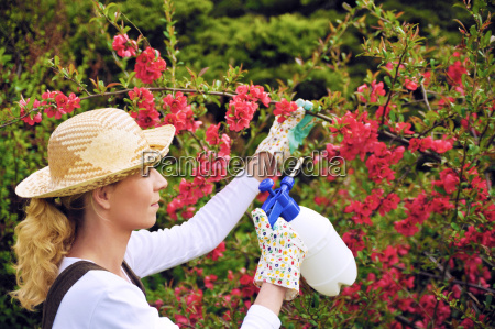 young woman spraying tree in garden