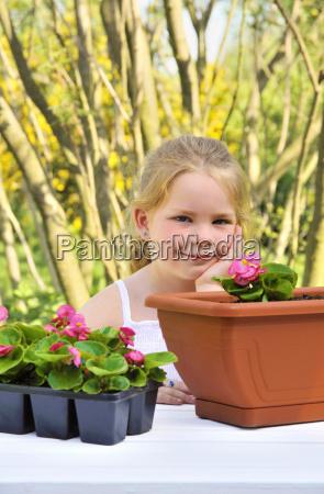 little girl gardening planting begonia seedlings