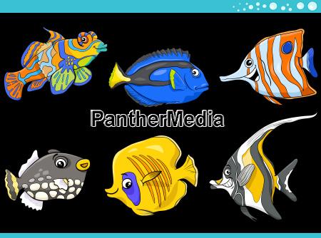 sea life fish characters set