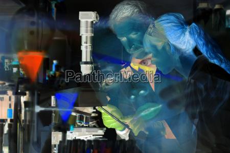 health care professionals in scientific laboratory