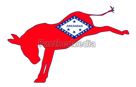 arkansas democrat donkey flag