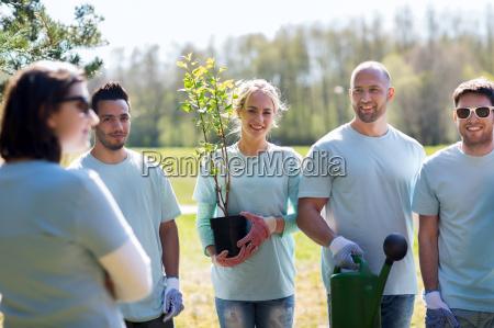 group of volunteers with tree seedling