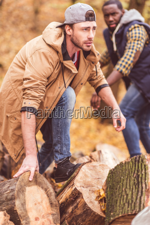 young, men, near, dry, stumps, in - 20114996