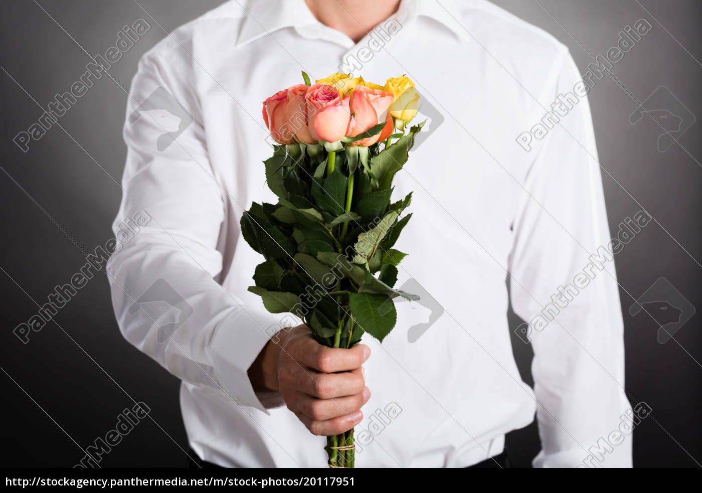 man, giving, roses - 20117951