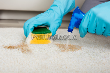 person cleaning stain with sponge on