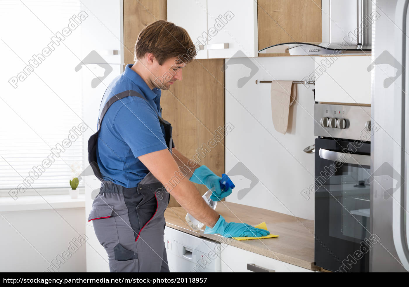 worker, in, overall, cleaning, countertop - 20118957