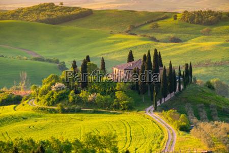 tuscany, , panoramic, landscape, -, italy - 20133469