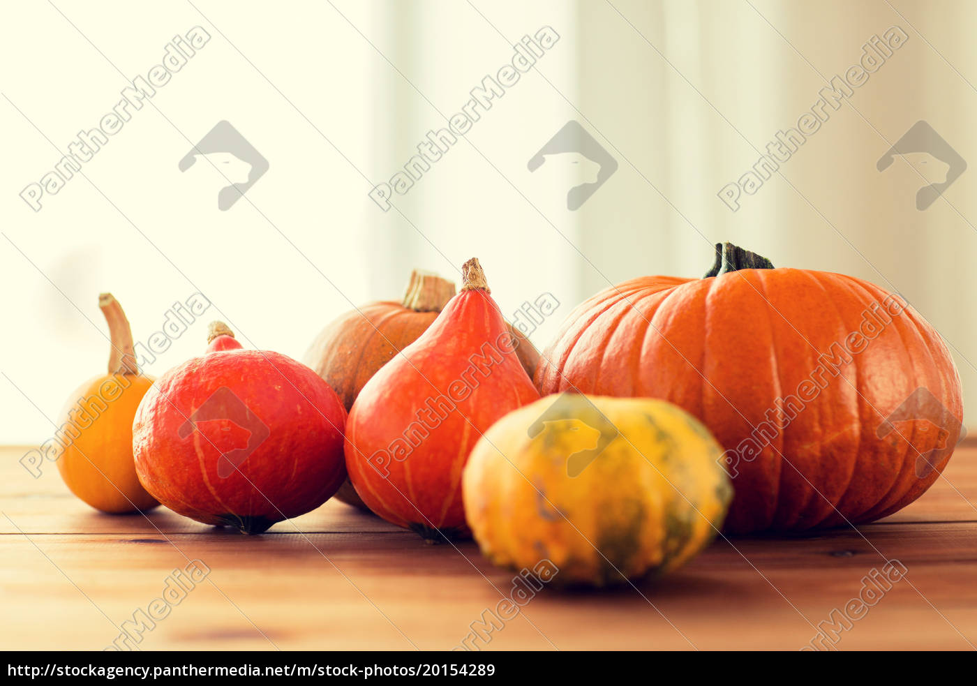 close, up, of, pumpkins, on, wooden - 20154289