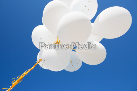 close, up, of, white, helium, balloons - 20169405