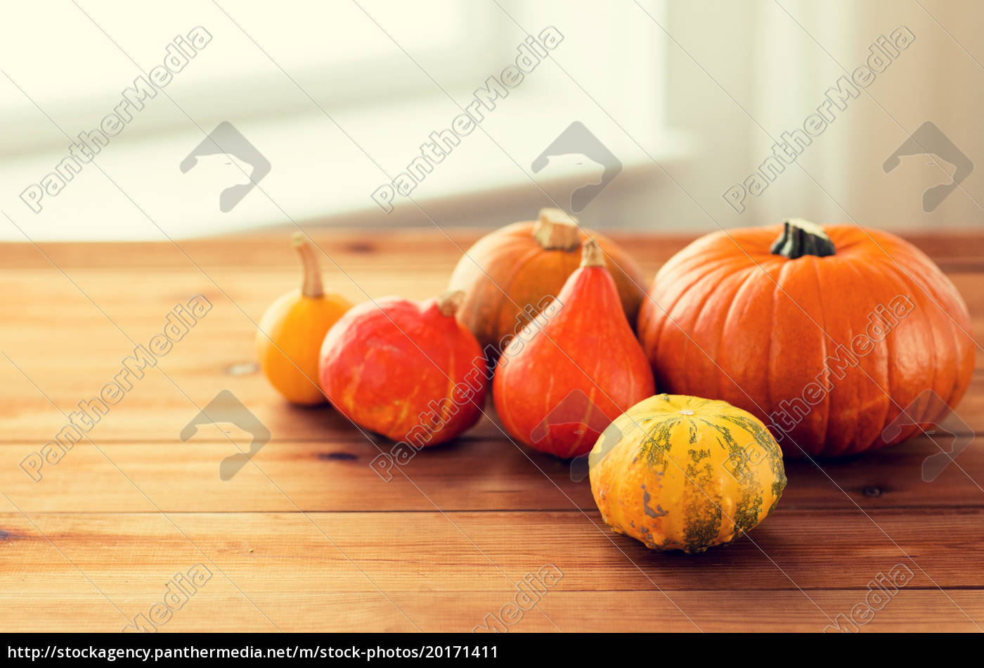 close, up, of, pumpkins, on, wooden - 20171411