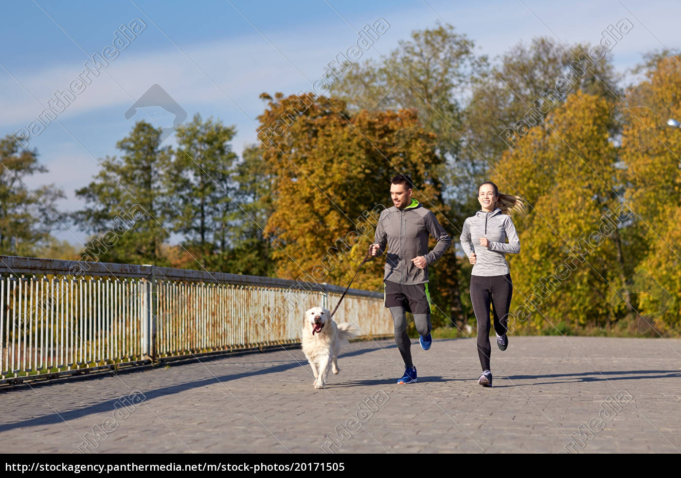 happy, couple, with, dog, running, outdoors - 20171505
