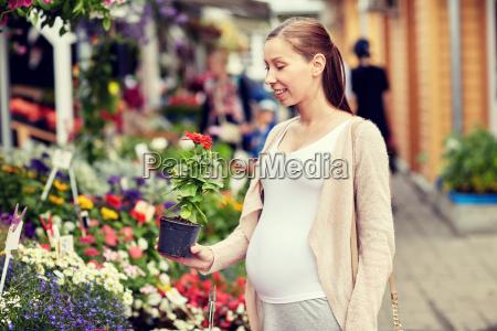 pregnant, woman, choosing, flowers, at, street - 20174489