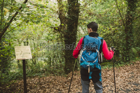 hiker looking at signpost in forest