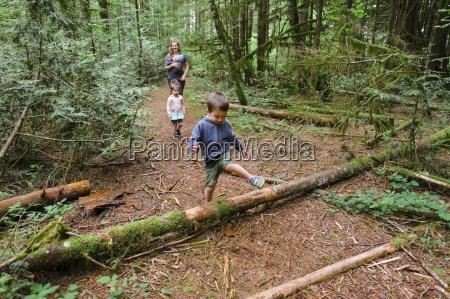 young boy climbing over a log