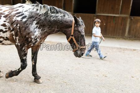 little boy leading horse