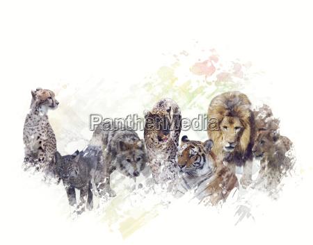wild animals watercolor