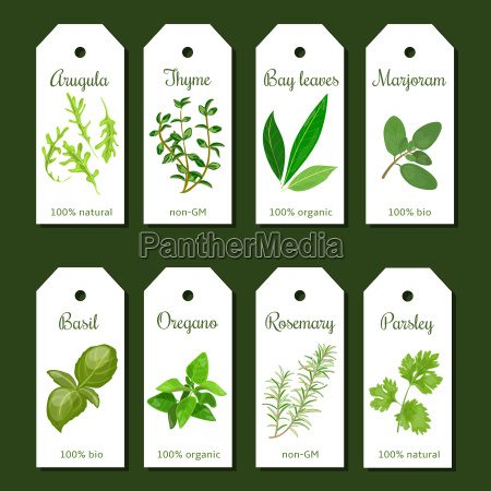 cooking herbs tags cute label set