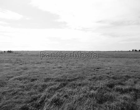 english country panorama in salisbury in