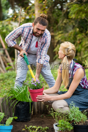happy gardeners planting potted plants at