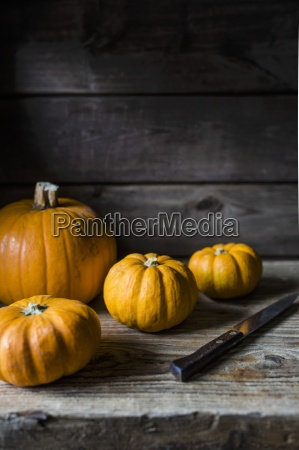 pumpkins with a knife