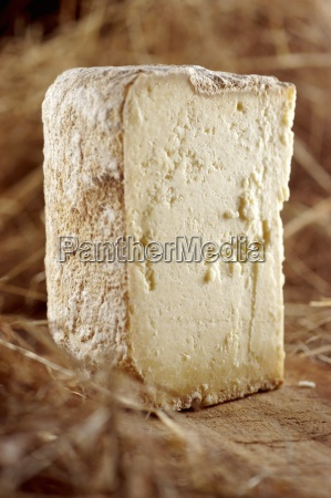 escarun hard cheese from piedmont italy