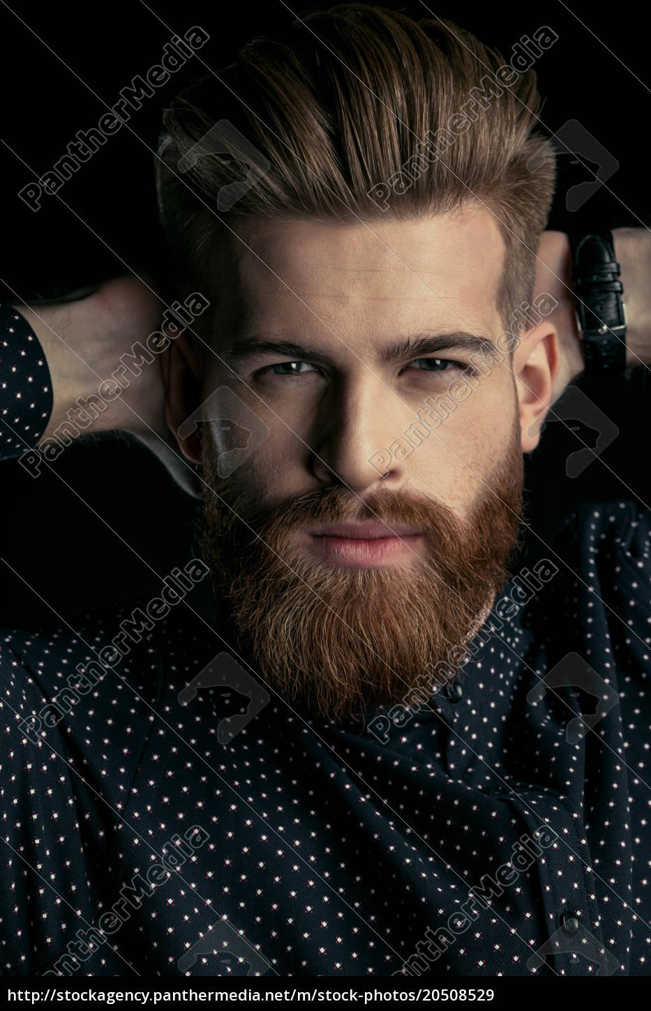 handsome, bearded, man, hipster, with, hands - 20508529