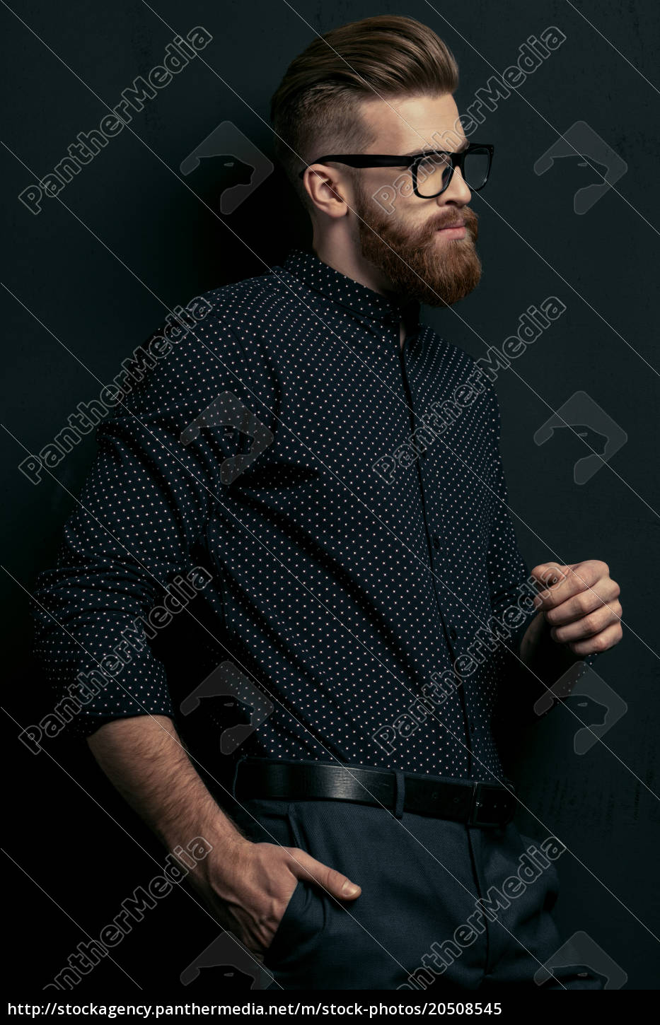 handsome, bearded, young, stylish, man, in - 20508545