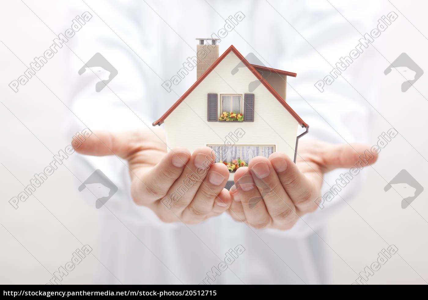small, toy, house, in, hands, - 20512715