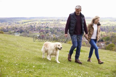mature couple taking golden retriever for