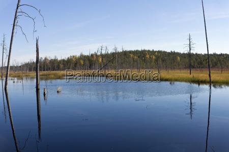 finland north karelia kuhmo lake in
