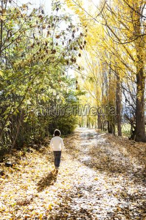 back view of little boy walking