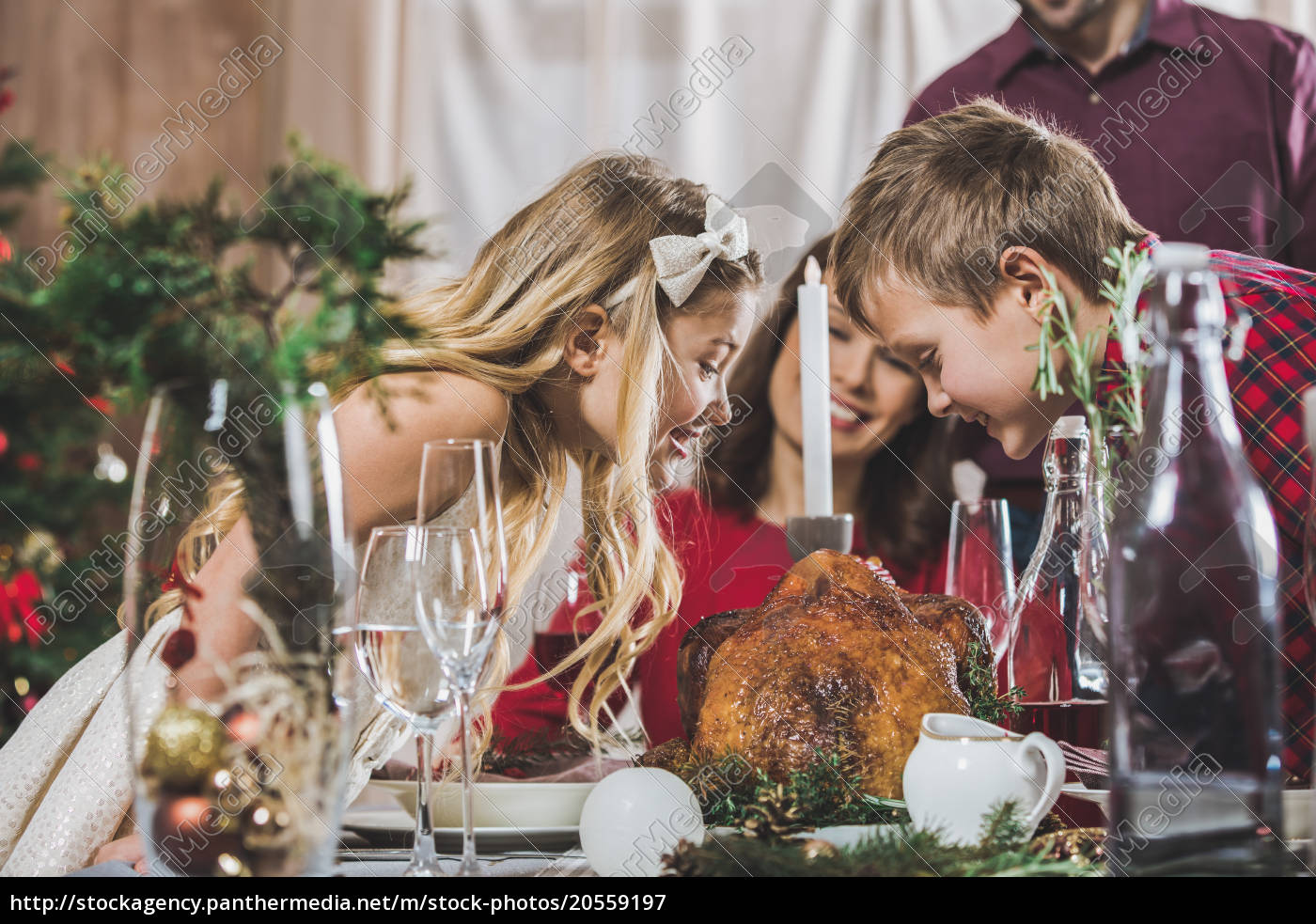 happy, siblings, at, holiday, table - 20559197