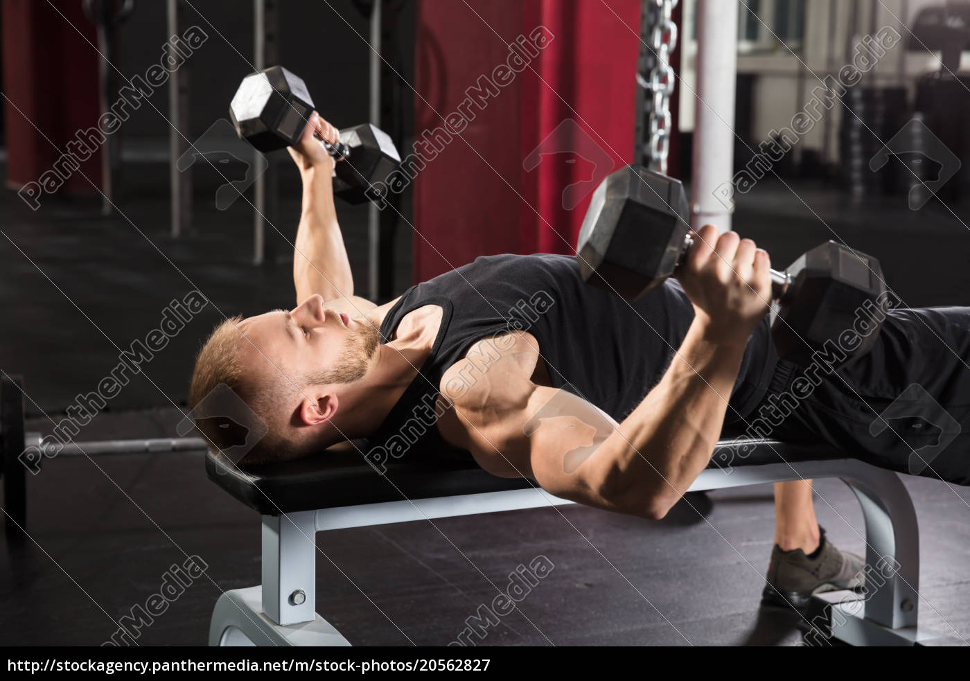young, man, working, out, in, gym - 20562827