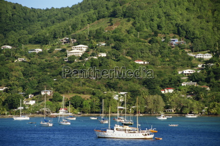 houses overlooking bay with moored sailing