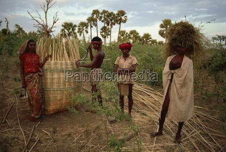 rathwa tribal people and grain basket