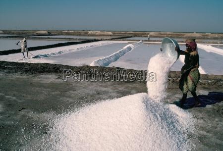 salt pans kutch district gujarat india