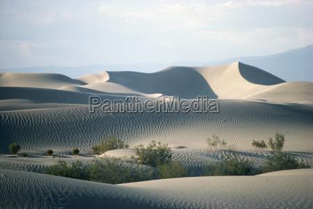 sand dunes on valley floor death