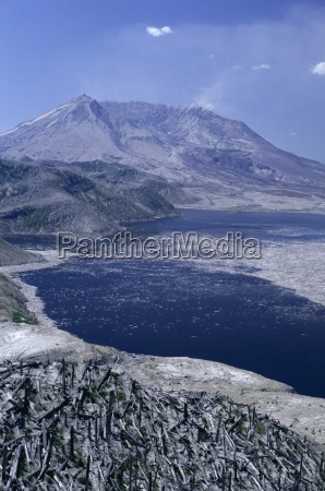 blast area of 1980 eruption with