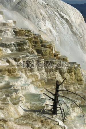 travertine calcite deposits on the canary