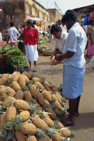 market vendor selling pineapples main market