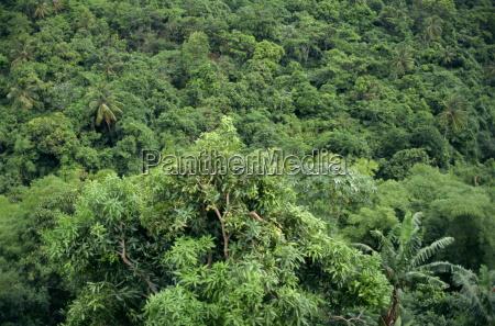 grenada windward islands west indies caribbean