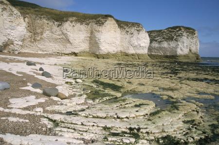 wave cut platform and chalk cliffs
